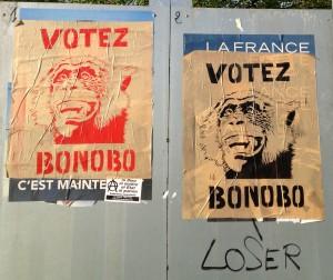 Votez Bonobo Arras mai 2012